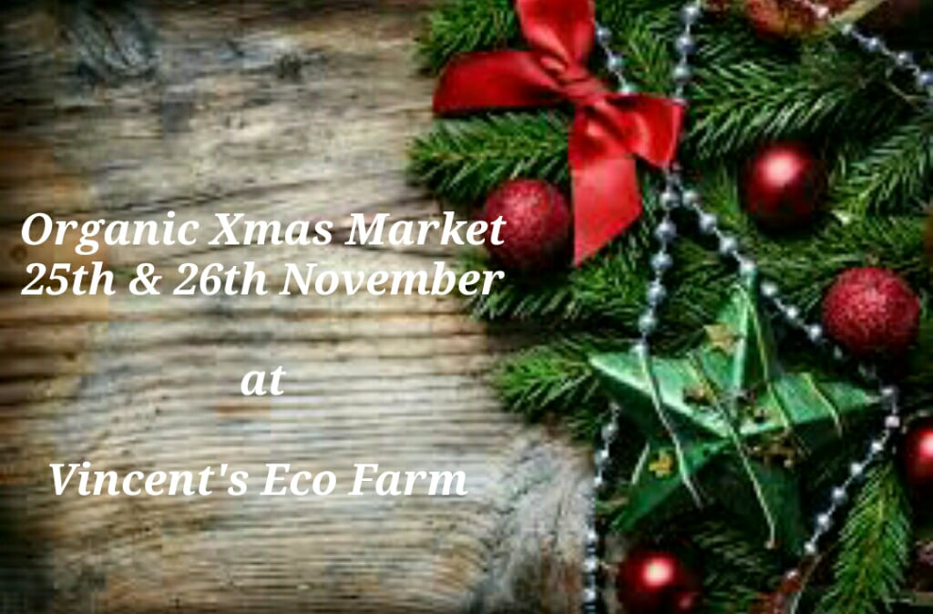 vincent's eco farm organic xmas event