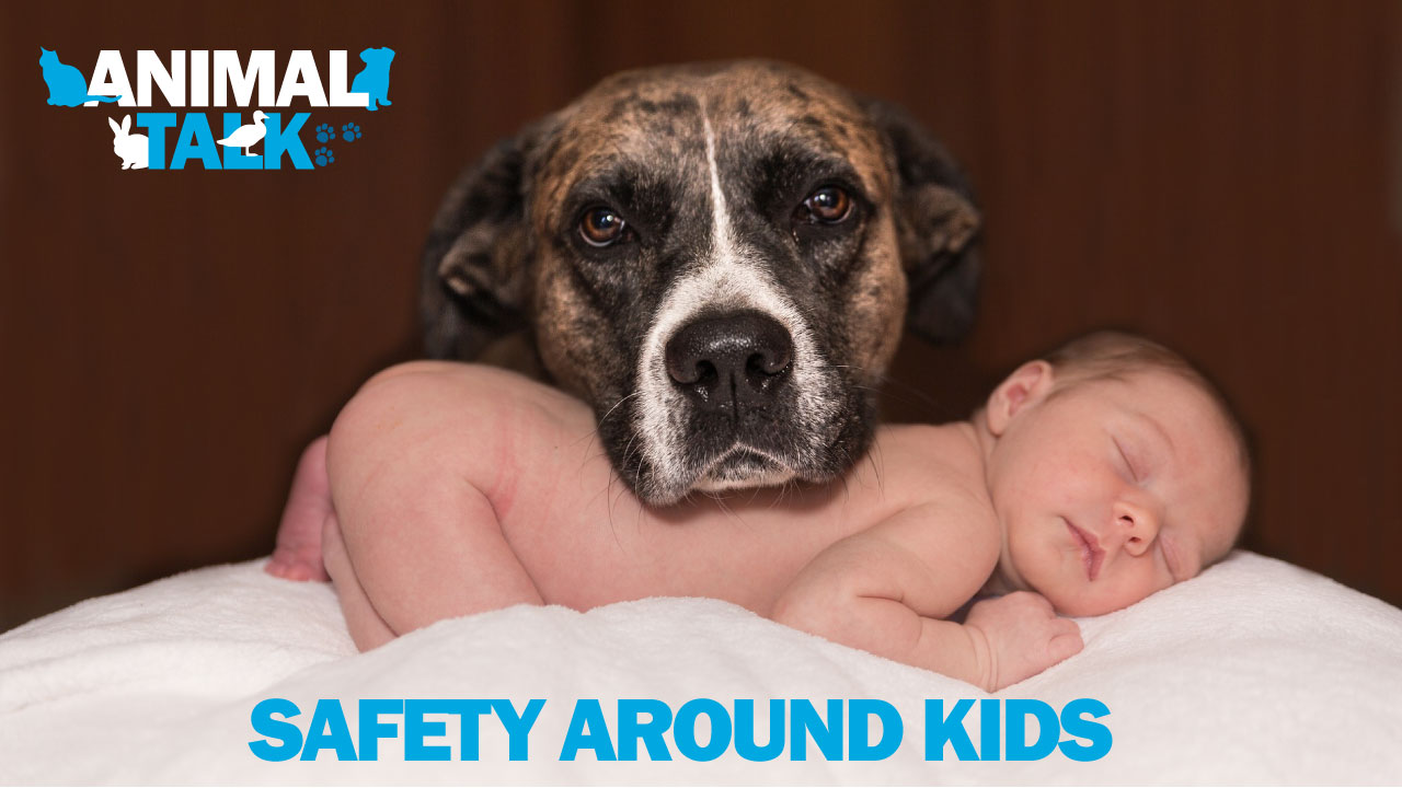 SAFETY-AROUND-KIDS