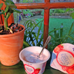A spring morning snack – with Kolios