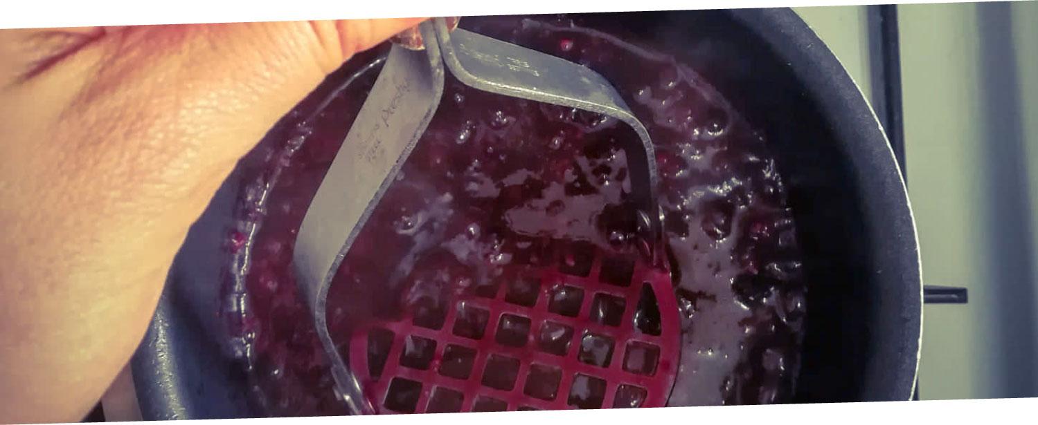ramona-debono-chia-seeds-and-berries-mashing
