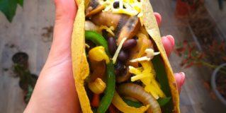 High Protein Tortilla Wraps