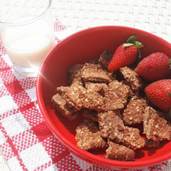 Healthy oatmeal chocolate cereal