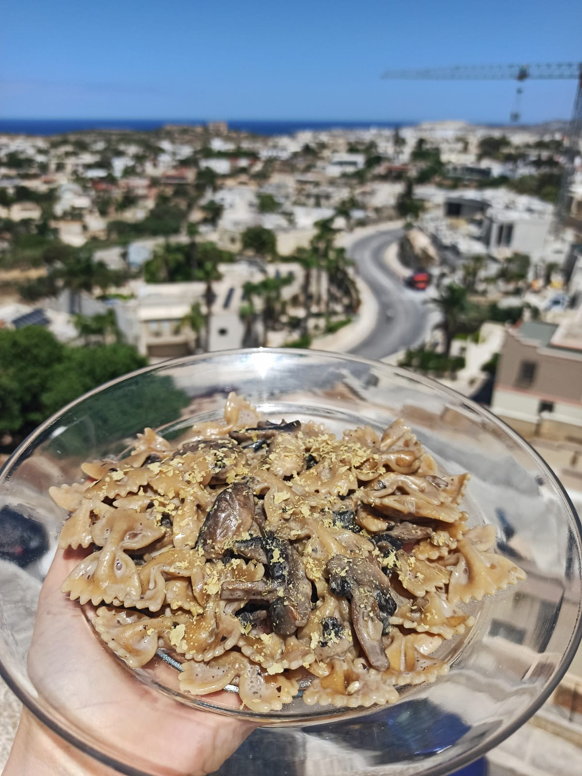 Vegan mushroom stroganoff with wholewheat pasta malta