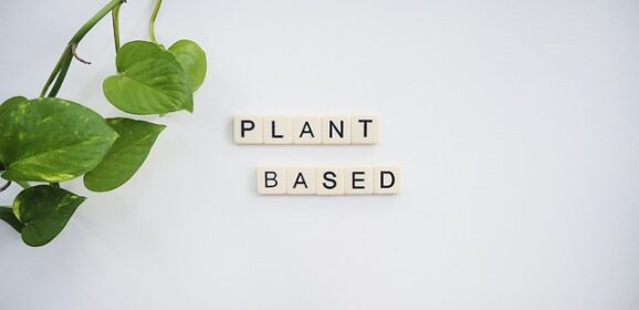 What are the benefits of a Plant-based diet?